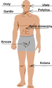 punkty na ciele mężczyzn do montażu